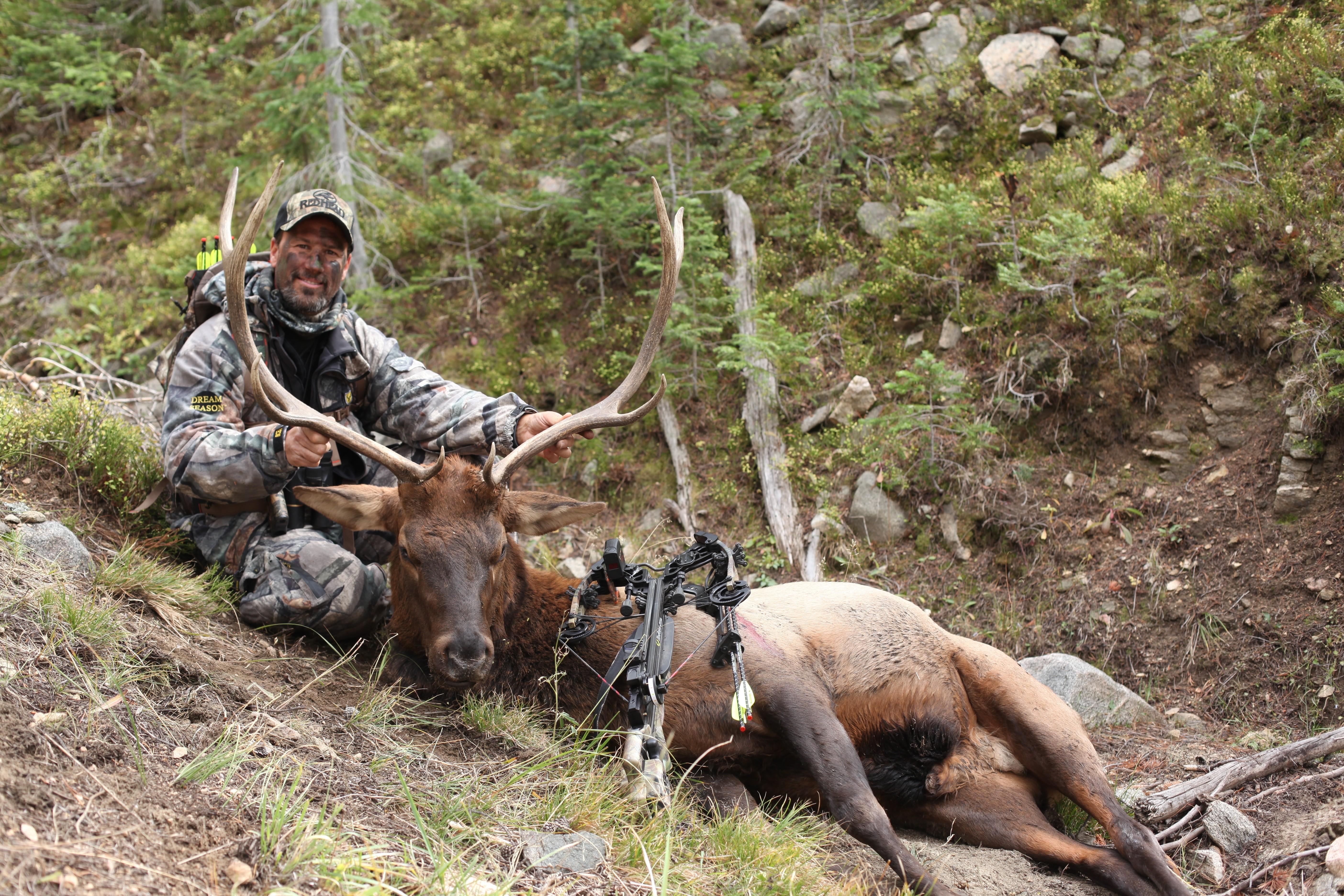 Doug '13 Elk (1)